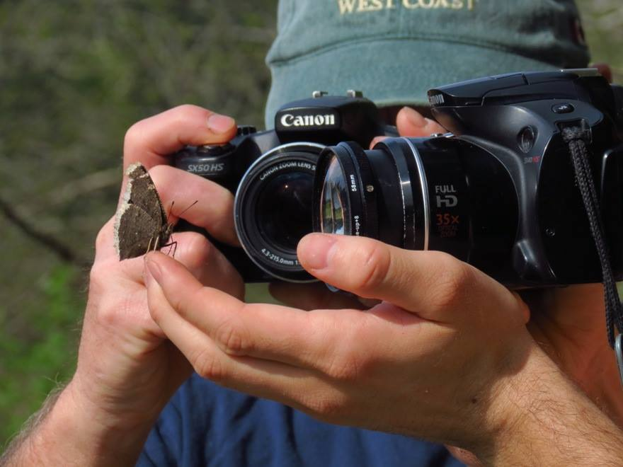 Bud and Robert photographing a moth, they are always looking for various animals to photograph