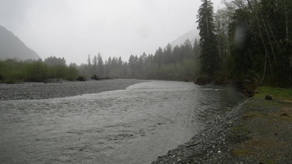 Conuma River Estuary, Pacific Northwest