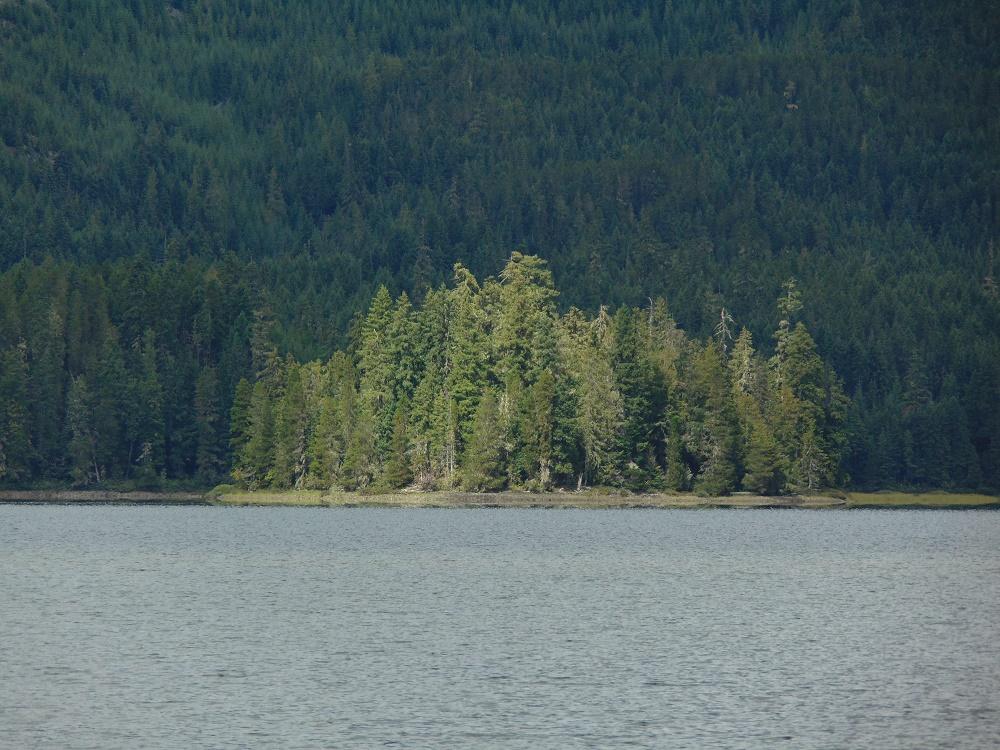 Upper Quinsam Lake