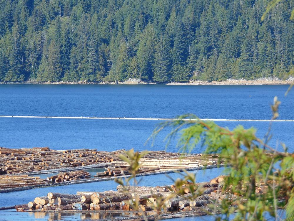 Beaver Cove, Vancouver Island, Pacific Northwest