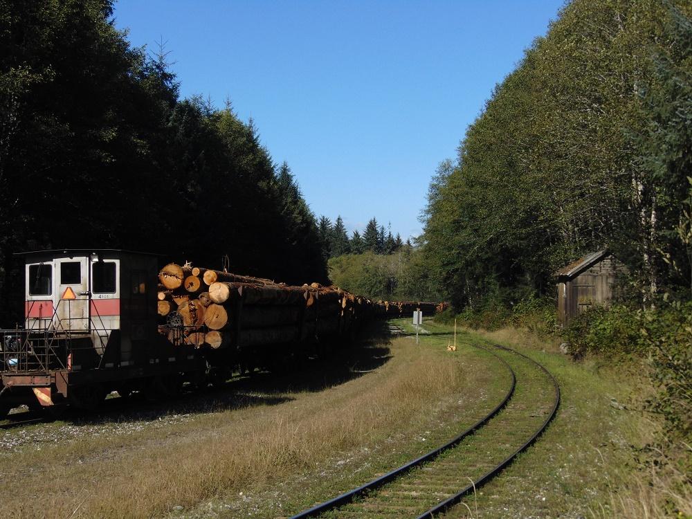 Beaver Cove Train