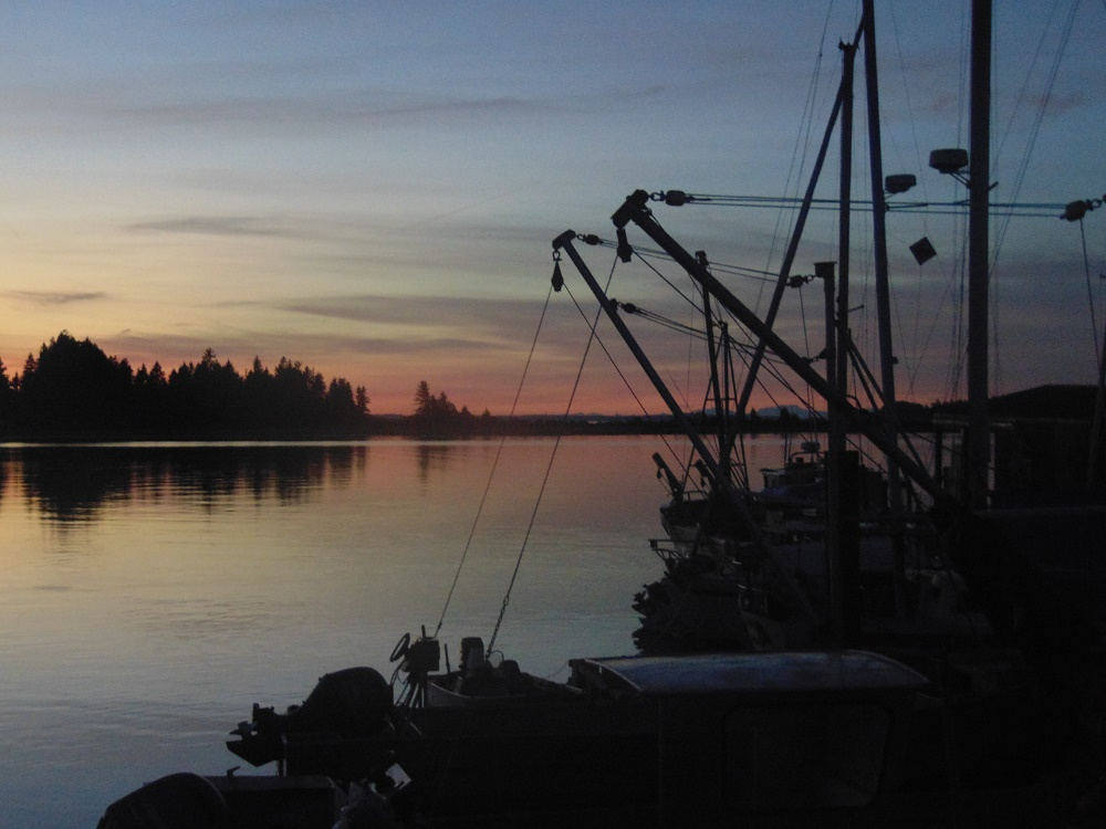 Fanny Bay, Vancouver Island, Pacific Northwest