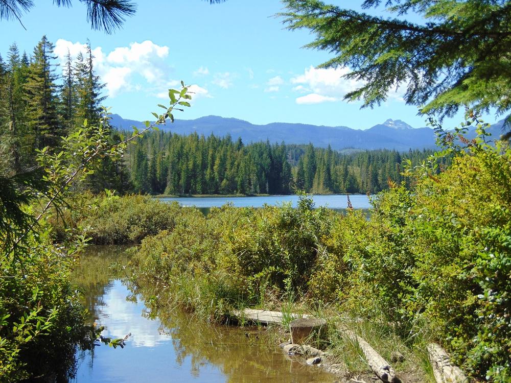 Reginald Lake, Vancouver Island, Pacific Northwest
