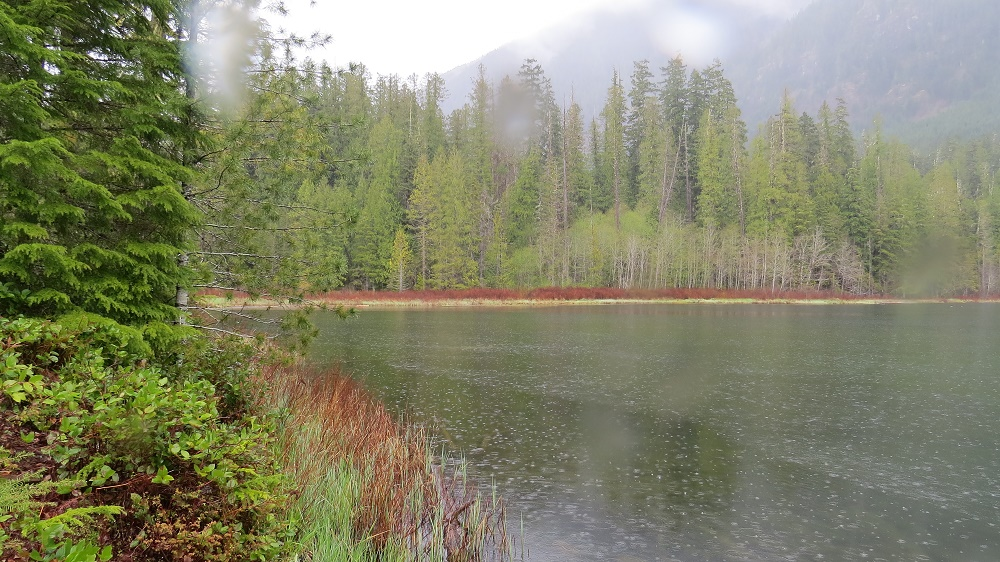 Antler lake, Vancouver Island, BC