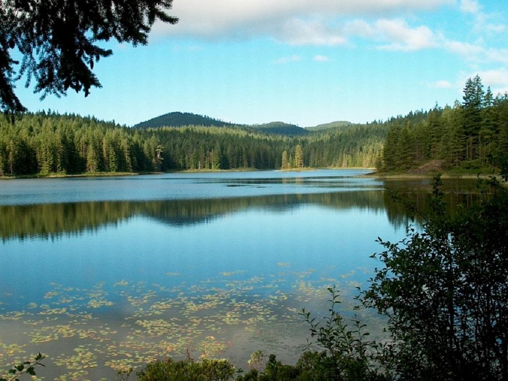 Beavertail Lake, Vancouver Island, BC
