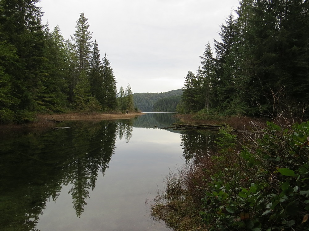 Blackwater Lake, Vancouver Island, BC