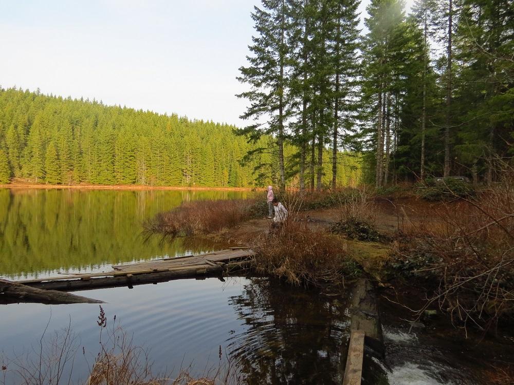 Blue Grouse Lake