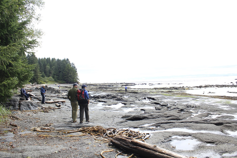 Botanical Beach, Vancouver Island, Pacific Northwest