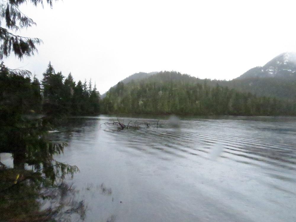 Bull Lake, Vancouver Island, BC