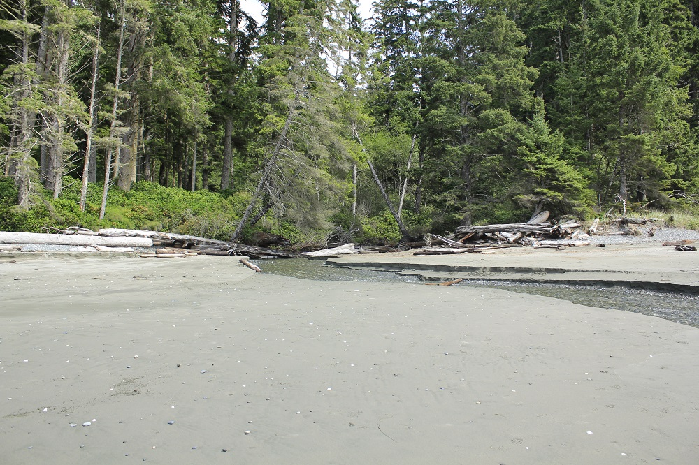 China Beach, Vancouver Island, Pacific Northwest