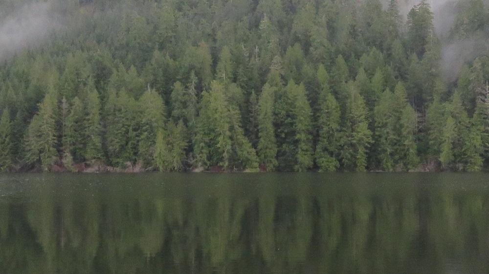 Darlington Lake