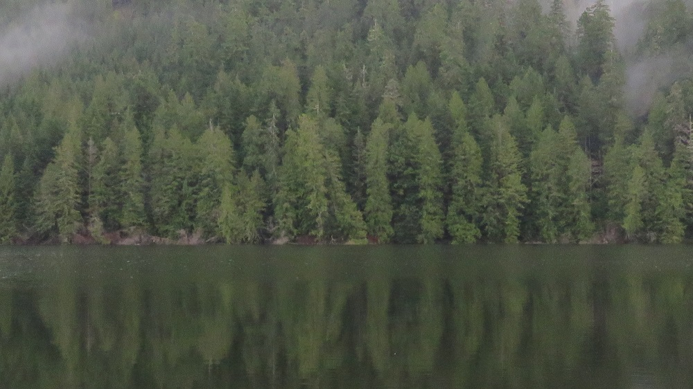 Darlington Lake, Vancouver Island, Pacific Northwest