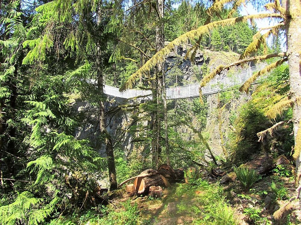 Elk Falls Suspension Bridge, Vancouver Island, Pacific Northwest