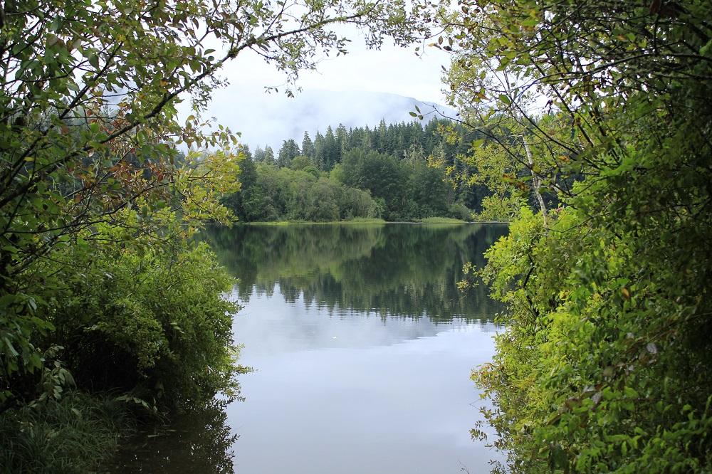 Fairy Lake, Vancouver Island, Pacific Northwest
