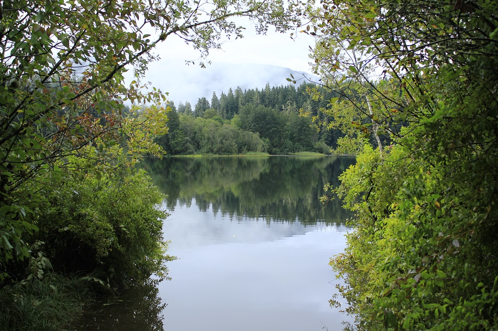 Fairy Lake, Vancouver Island, Pacific Northwest