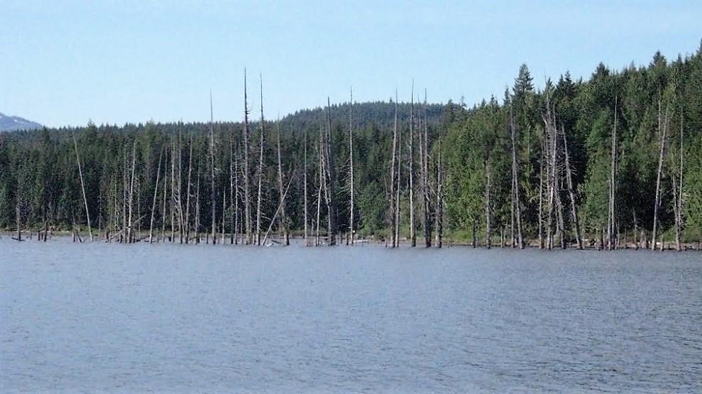 Fry Lake