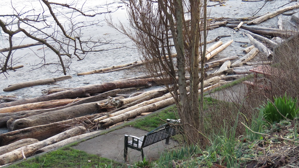 Gonzales Bay, Vancouver Island, BC
