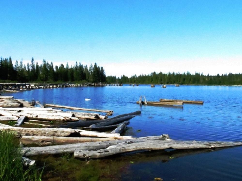 Gooseneck Lake