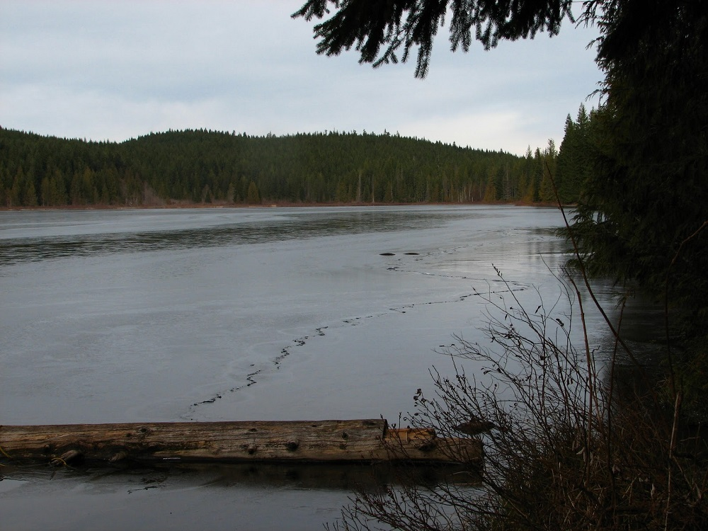 Gray Lake, Vancouver Island, Pacific Northwest