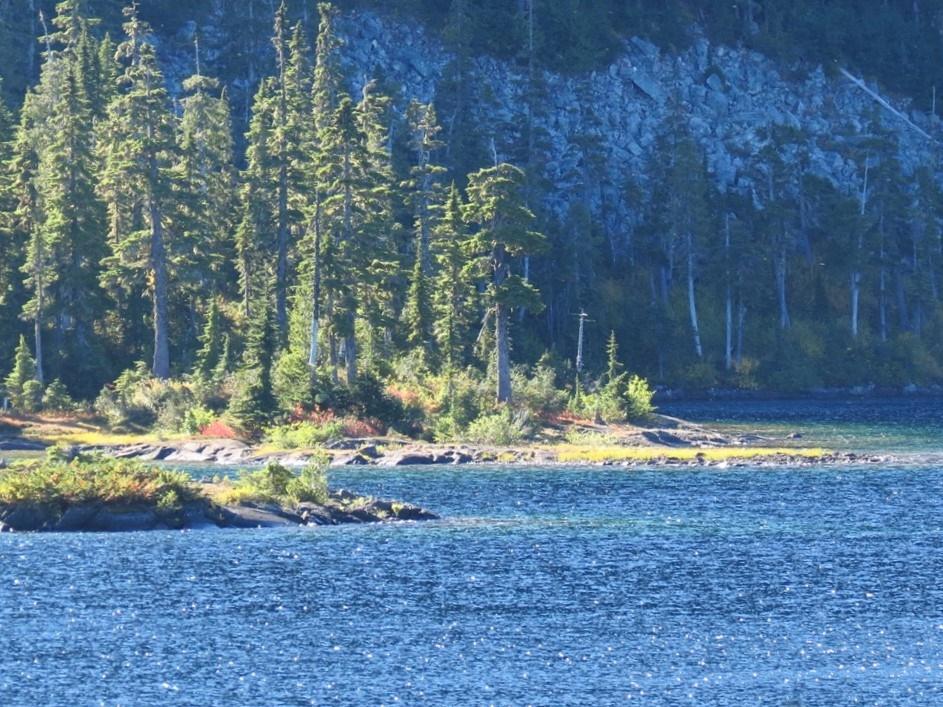 Lake Helen McKenzie