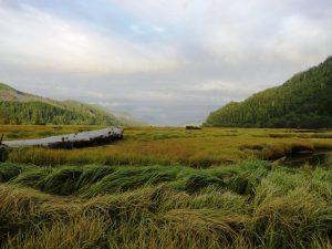 Goodspeed River Estuary