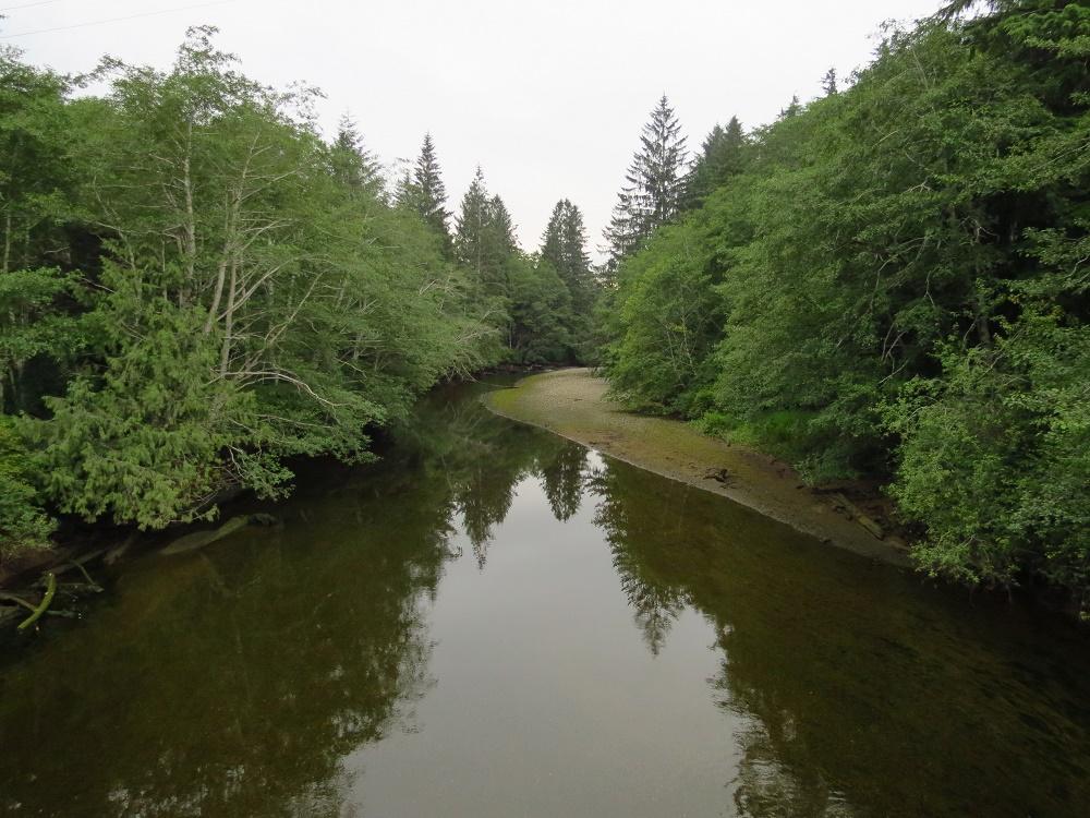 Goodspeed River Estuary, Vancouver Island, BC