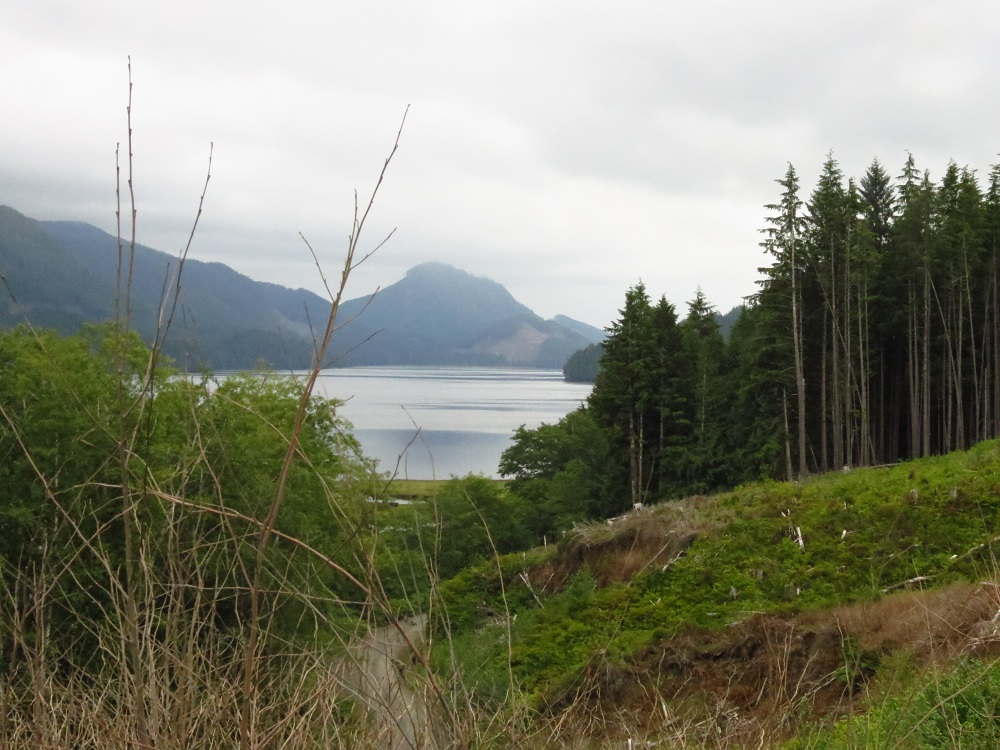 Holberg Inlet, Pacific Northwest