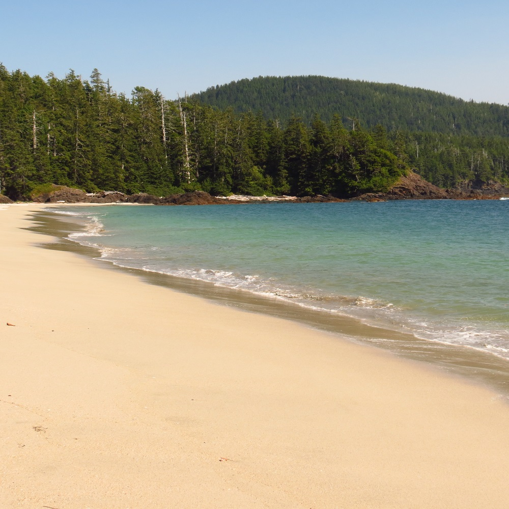 Grant Bay, Vancouver Island, Pacific Northwest