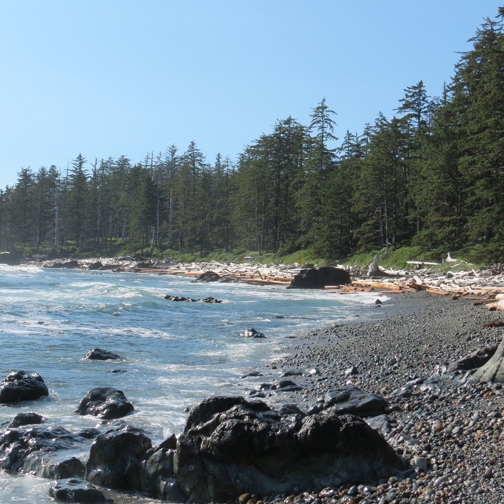 Vancouver Bc Beaches: Hecht Beach, Vancouver Island, BC