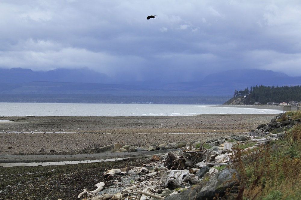 Holmes Point Beach, Vancouver Island, BC