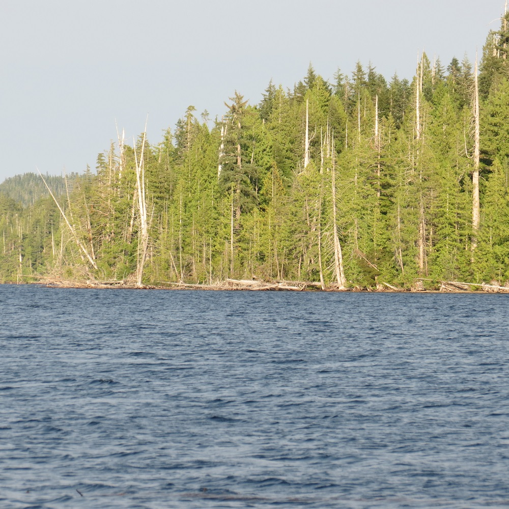 Kains Lake, Vancouver Island, Pacific Northwest