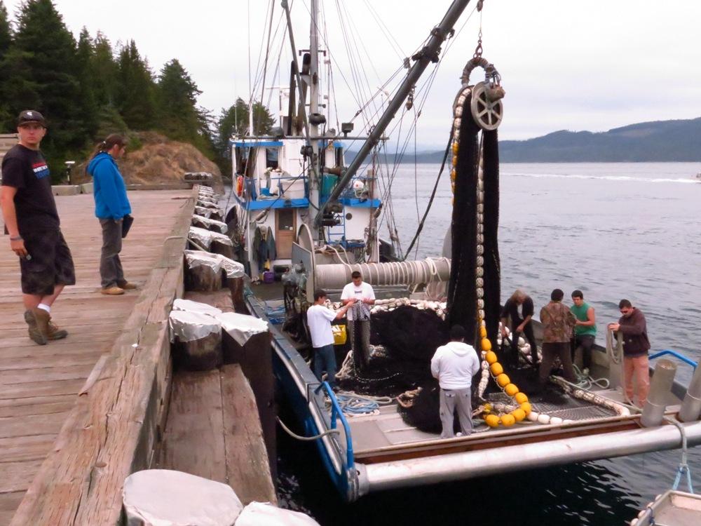 Kelsey Bay, Vancouver Island, Pacific Northwest