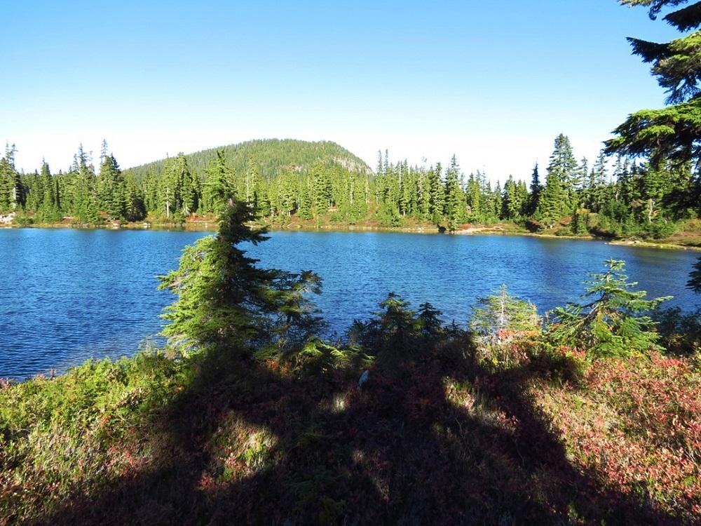 Kwai Lake, Vancouver Island, Pacific Northwest