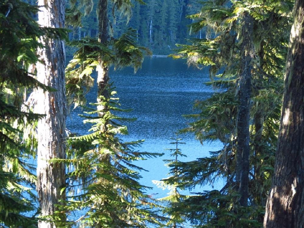 Lady Lake, Vancouver Island, Pacific Northwest