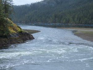 Little Espinosa Inlet, BC Coastal Region