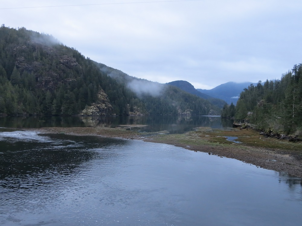 Little Espinosa Inlet, Vancouver Island, BC