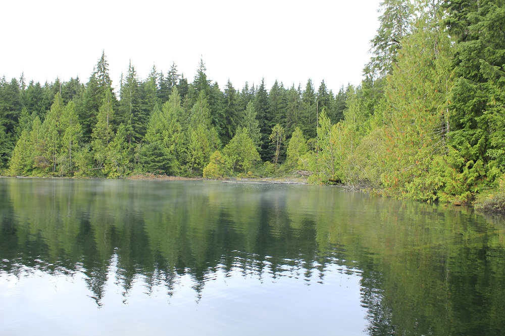 Lizard Lake, Vancouver island, Pacific Northwest