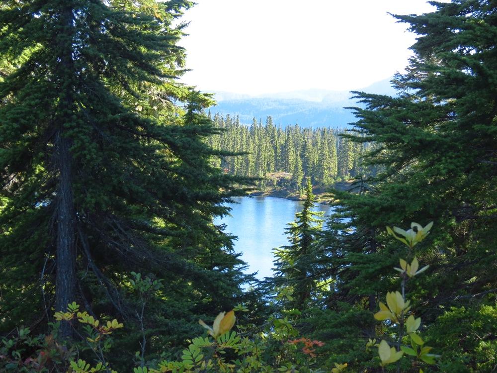 Mariwood Lake, Vancouver island, Pacific Northwest