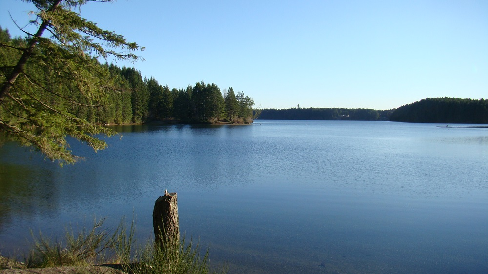 Mcivor Lake, Vancouver Island, Pacific Northwest