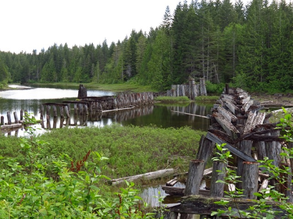 Merril Lake, Vancouver Island, Pacific Northwest