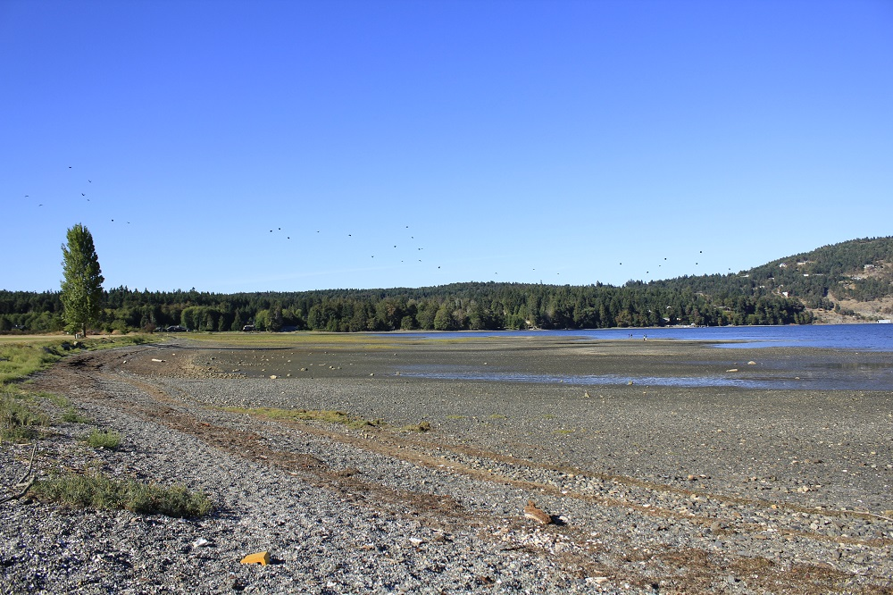 Nanoose Bay Beach, Vancouver Island, BC