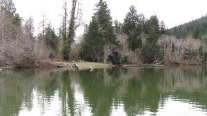 Nitinat Lake