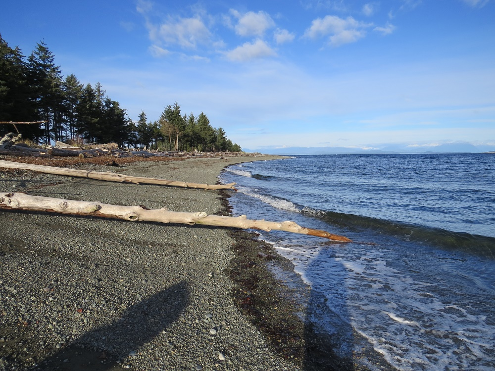 Oyster River Beach, Vancouver Island