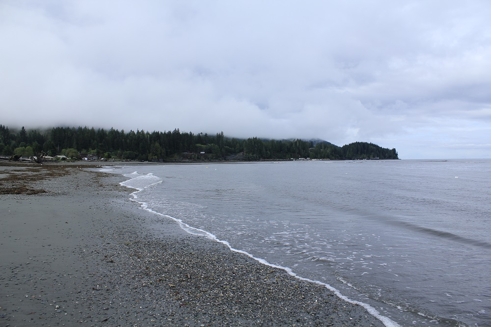 Pacheehaht Beach, Port Renfrew