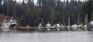 Quadra Island, BC Coast