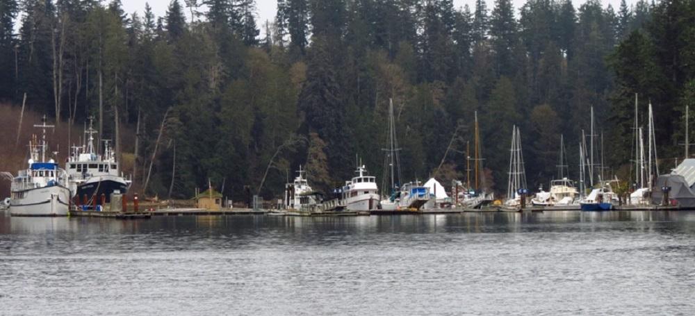 Quadra Island, Pacific Northwest