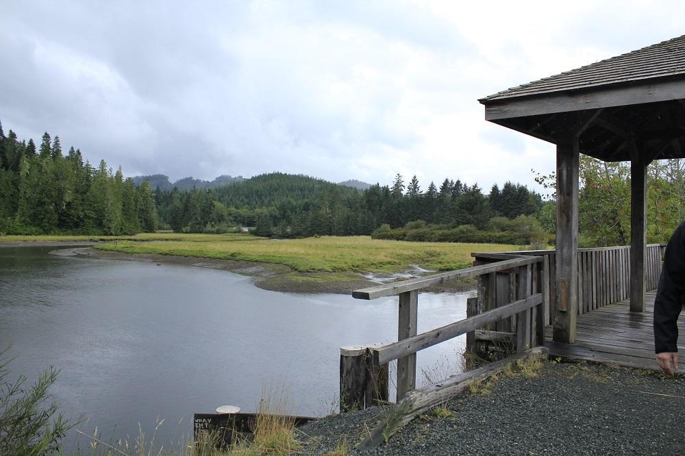 Quatse River Estuary, Pacific Northwest