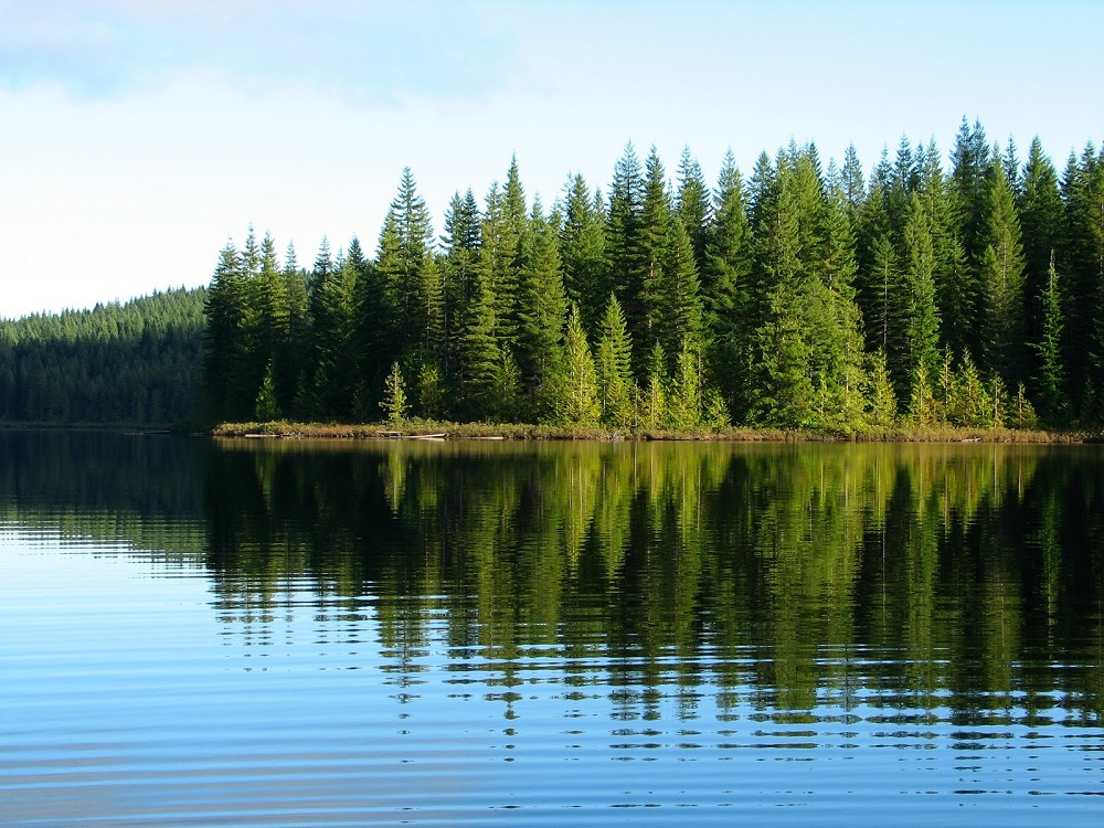 Regan Lake