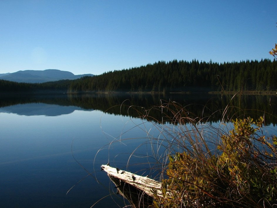 Regan Lake, Vancouver Island, Pacific Northwest