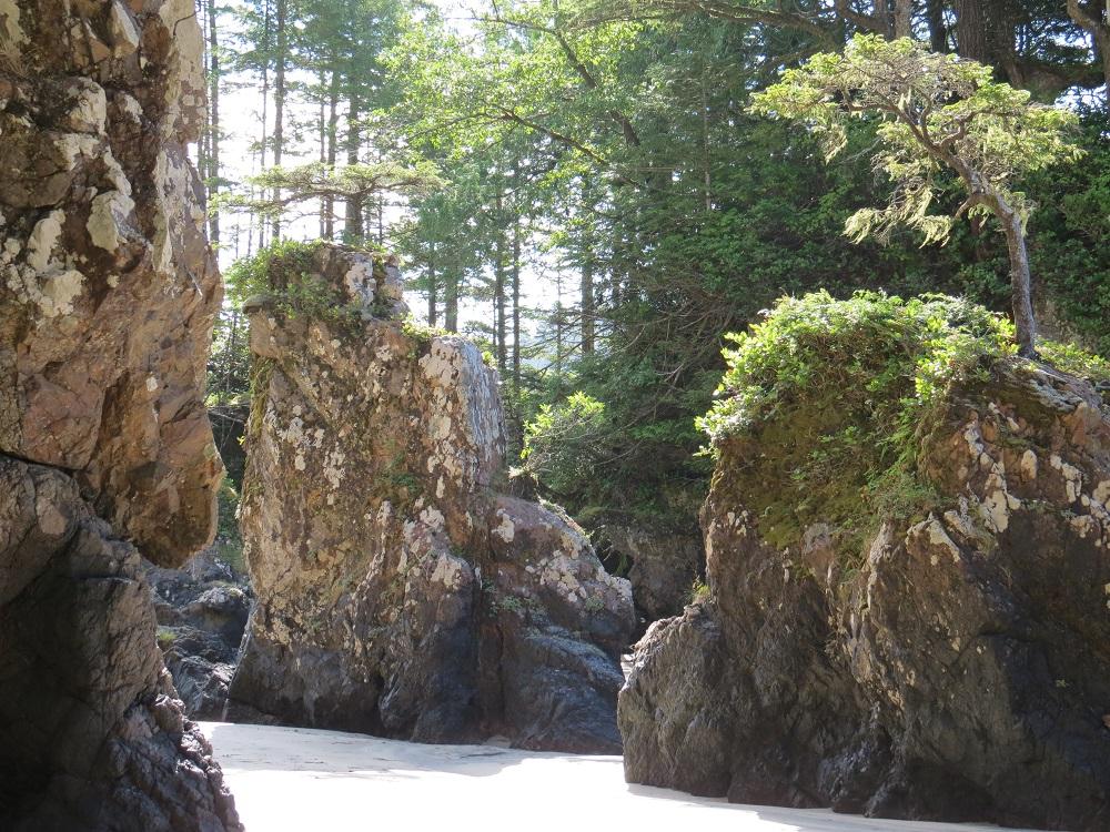 San Josef Bay, Vancouver Island, Pacific Northwest